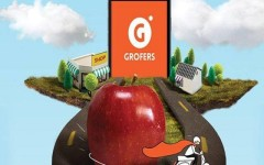 Grofers India seeks govt approval for FDI in food trading